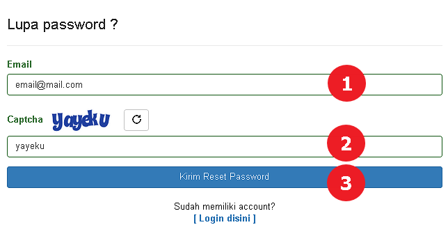Tampilan Form Meminta Reset Password