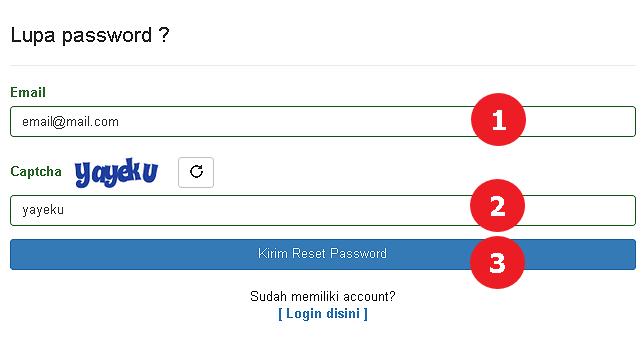 Tampilan Form Meminta Reset Password